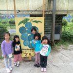 夏休み真只中、ぶどう園では子供たちで大賑わい